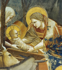 Giotto di Bondone | Nativity: Birth of Jesus