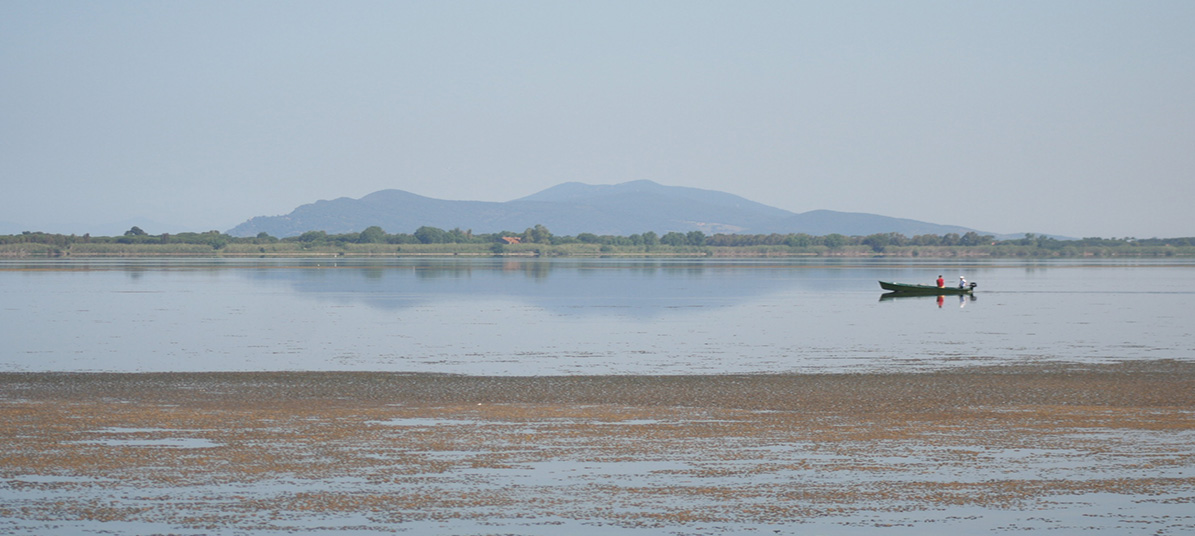 Orbetello, Lago di Ponente, in the background Monte Amiata and Monte Labbro