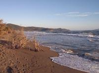 Torba spiaggia