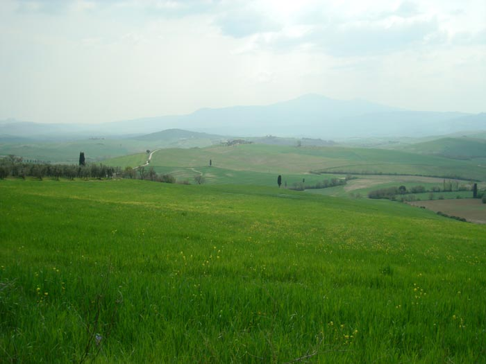 Val d'Orcia, between Pienza and San Quirico d'Orcia